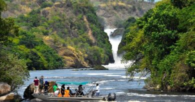 Tourism Journal: Welcome to Murchison Falls National Park